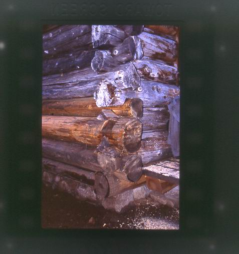 A corner of the cabin with new logs sitting on the stone foundation.