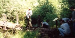 The E-team removes the old bridge